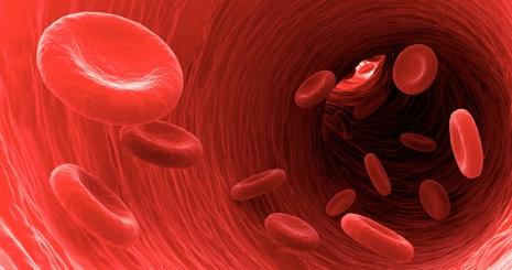 Csecsemőkori vérszegénység