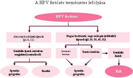 hpv vírus az emberek kezelésében