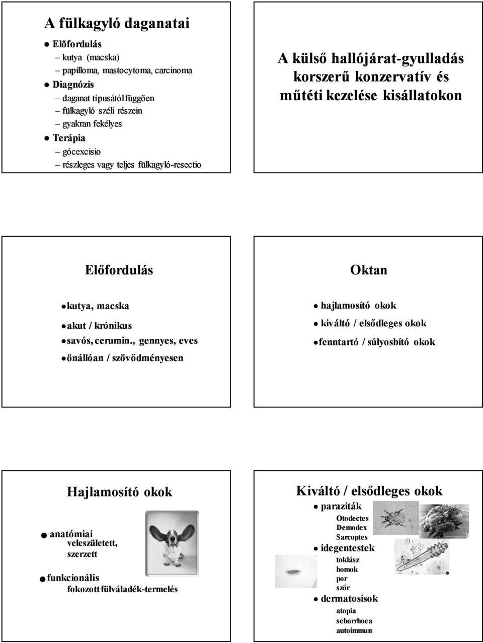 paraziták, amelyek papillómát okoznak gyomor- és parazitaellenes gyógyszerek