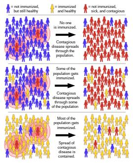 inaktivált papilloma vírus vakcina