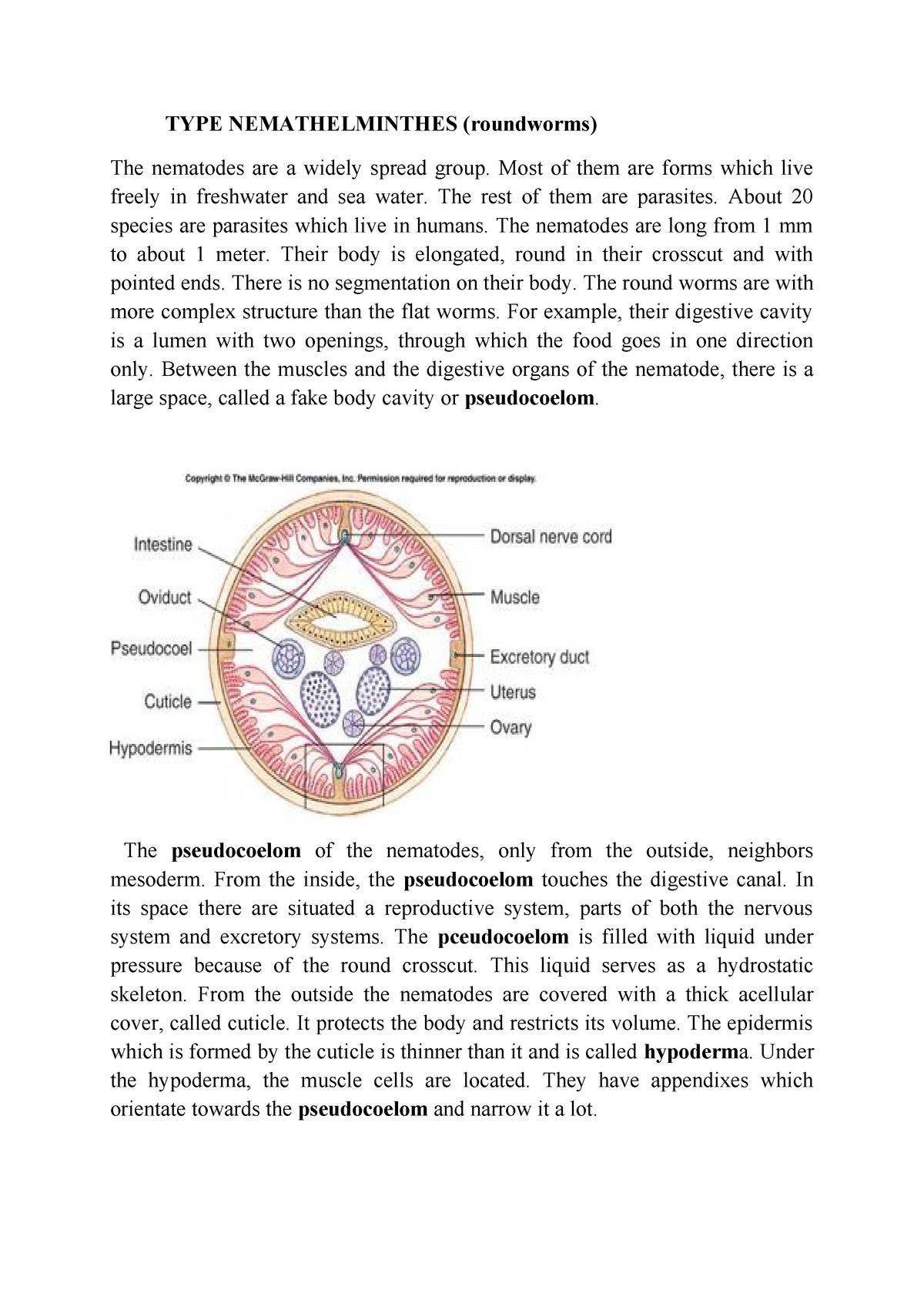 trichocephalus biohelminth papilloma vírus mikrobiológiája
