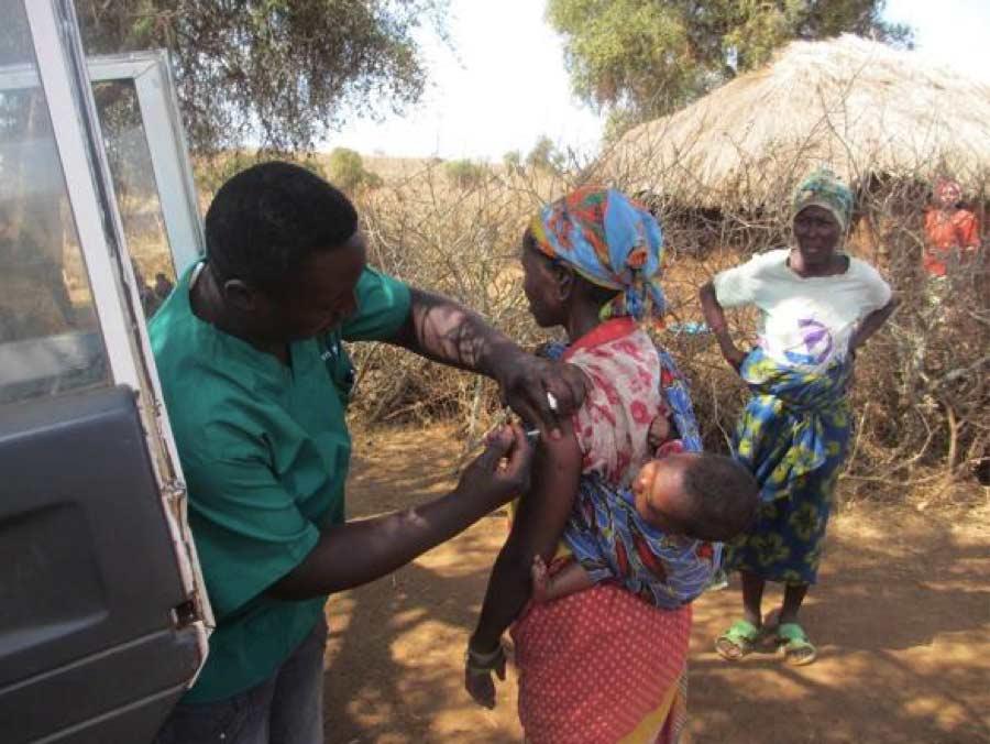 papilloma vírus és sterilitási vakcina pirított gomba