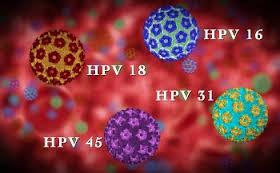 okozhat-e a hpv vírus hasnyálmirigyrákot nekrózis tüneteinek kezelése felnőtteknél