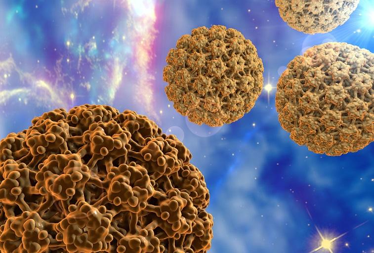 condyloma korai stádiumban gyógyszer a szervezetben található összes parazita ellen