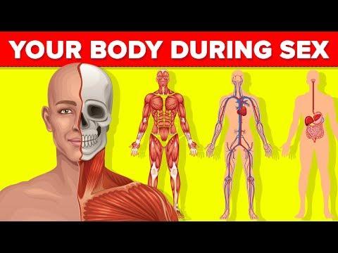 milyen paraziták lehetnek az emberi testben