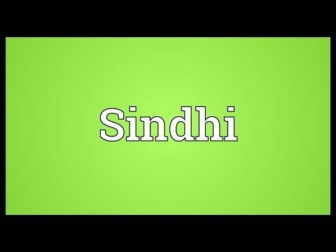 papilloma jelentése sindhi-ban