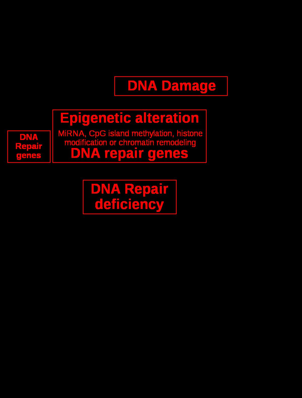 genetikai rákos elváltozások szemölcsök a kis ajkak eltávolításakor