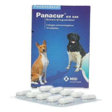 giardia hond panacur pinworms tünetek gyermekek