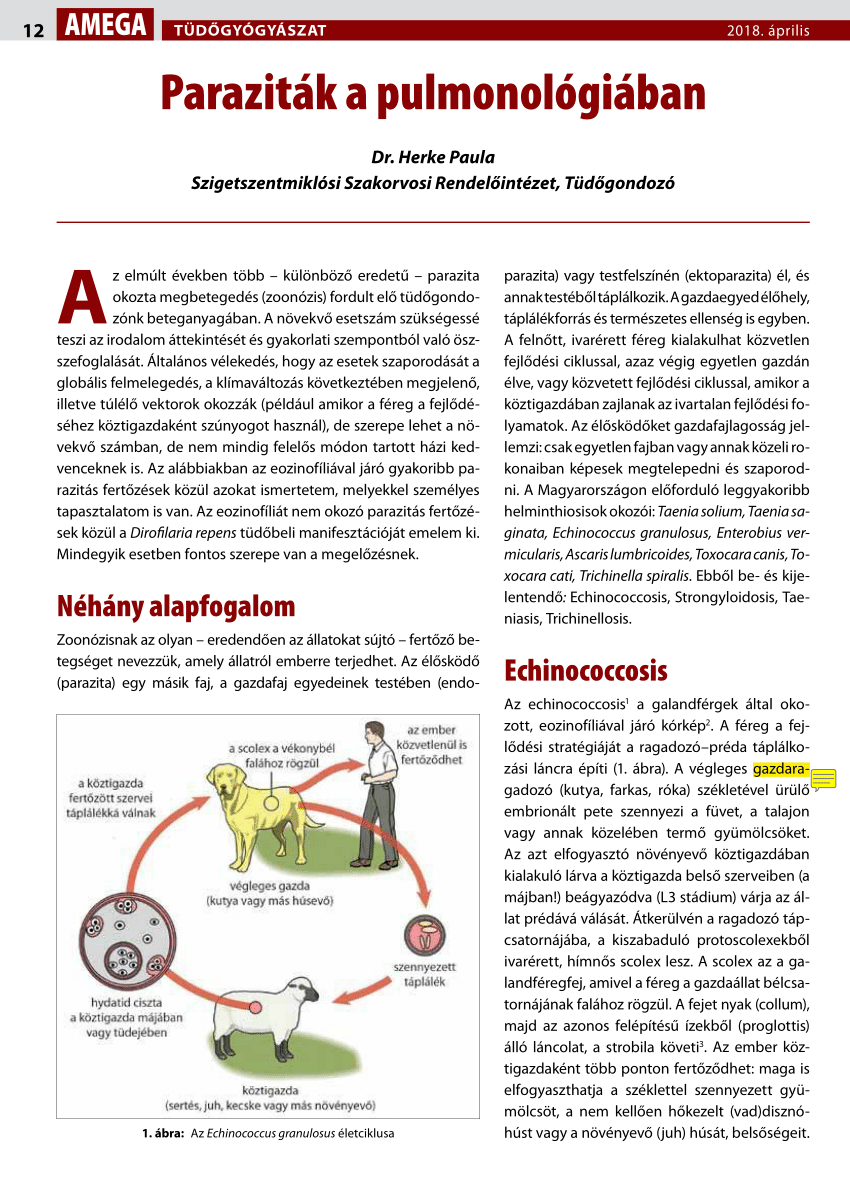 a helminthicus fertőzés etiológiája